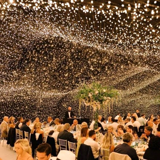 Fairy Stringlights Wedding 04